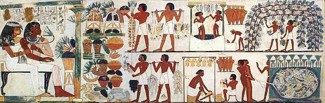 Fruits in ancient Egypt