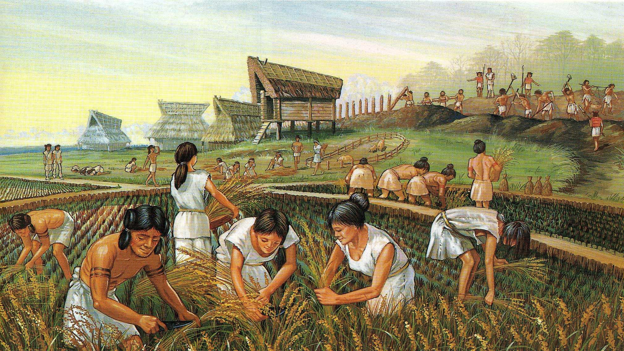 agriculture mesopotamia