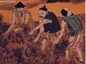 Millet, ancient China