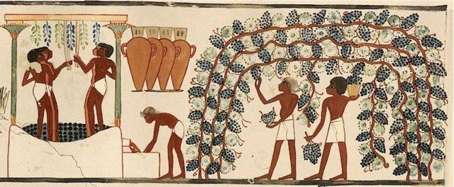 ancient egyptian wine